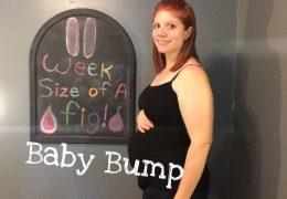 11 Weeks Pregnant Baby #3 | Pregnancy Vlog