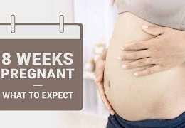 8 Week Pregnant – What to Expect?